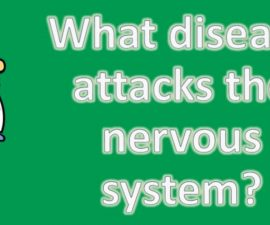 What disease attacks the nervous system ? | Health and Life